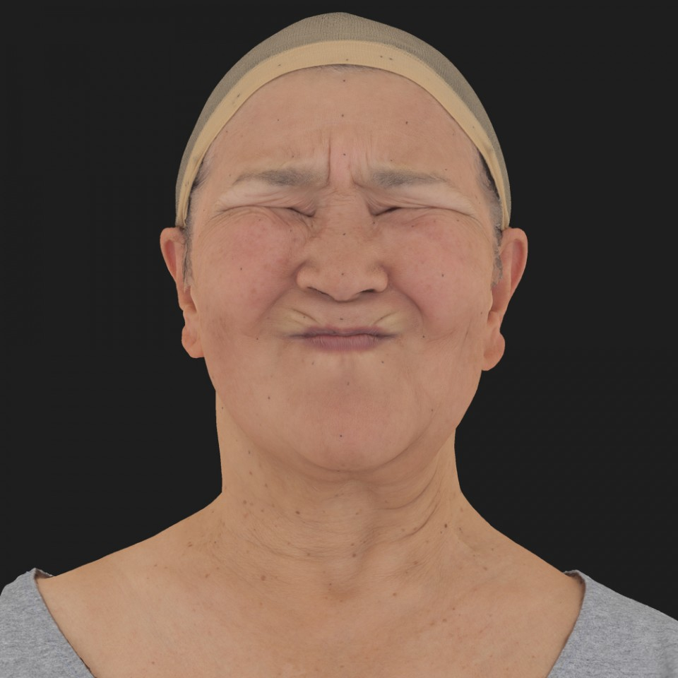 Sheryl Tseng 06 Face Compression
